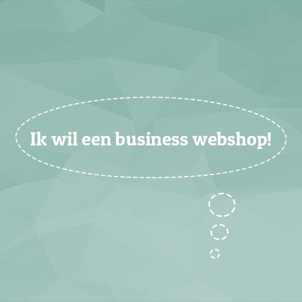 ik wil een business webshop