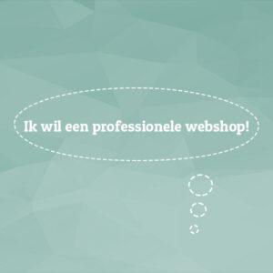 ik wil een professionele webshop