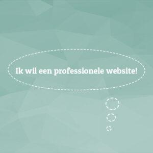 ik wil een professionele website