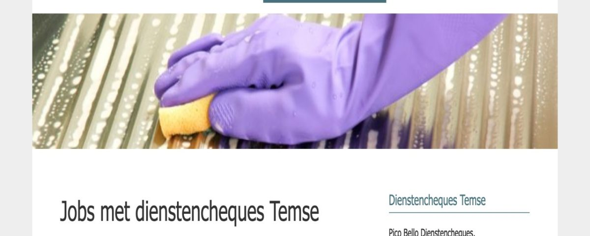 pico bello dienstencheques website